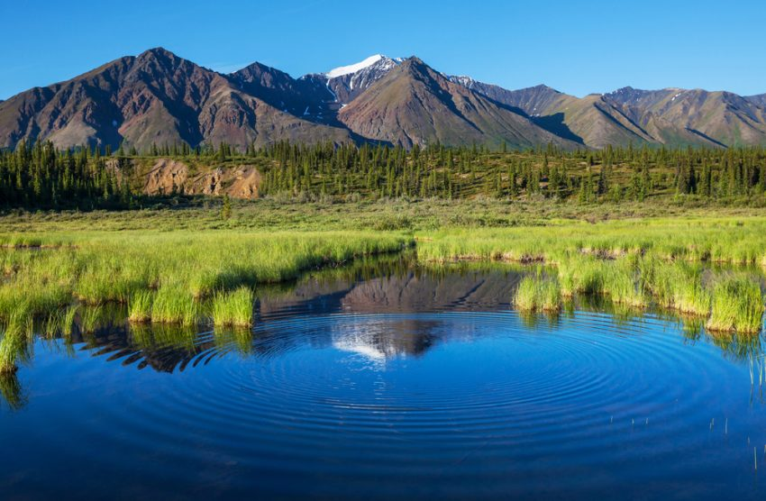 Alaska Family Multisport Tour (6 Days). Lake on Alaska