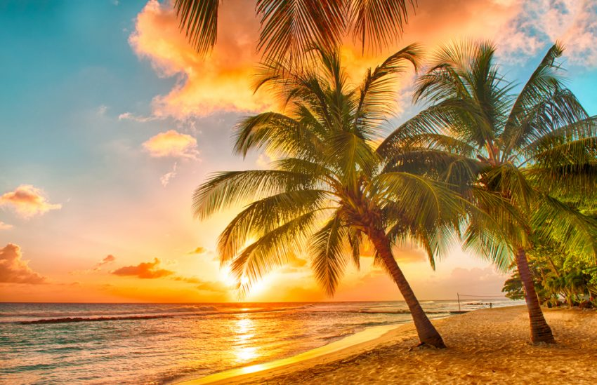 5 Best Destinations for Winter Sun. Beautiful sunset over the sea with a view at palms on the white beach on a Caribbean island of Barbados
