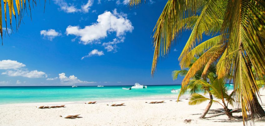 Black Friday Week! South and Europe Packages. Caribbean beach with palms, paradise island