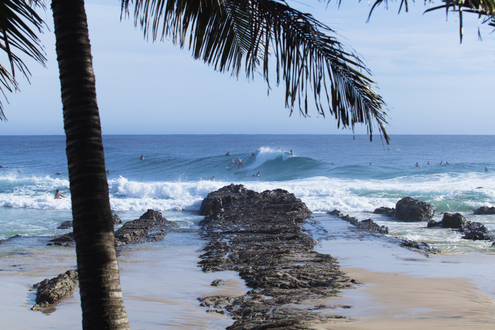 Surfers catching big waves at Snapper Rocks on the Gold Coast, Queensland, Australia