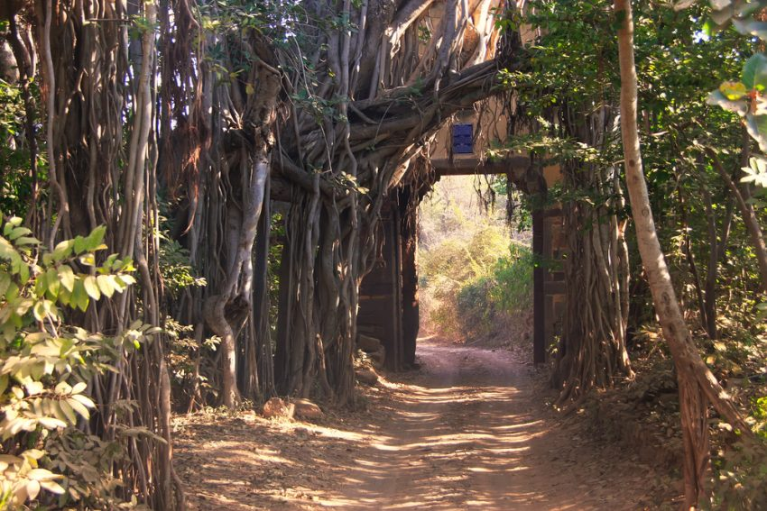 India's Best Wildlife Safari Parks. Entrance gate to Ranthambore National Park, Rajasthan, India