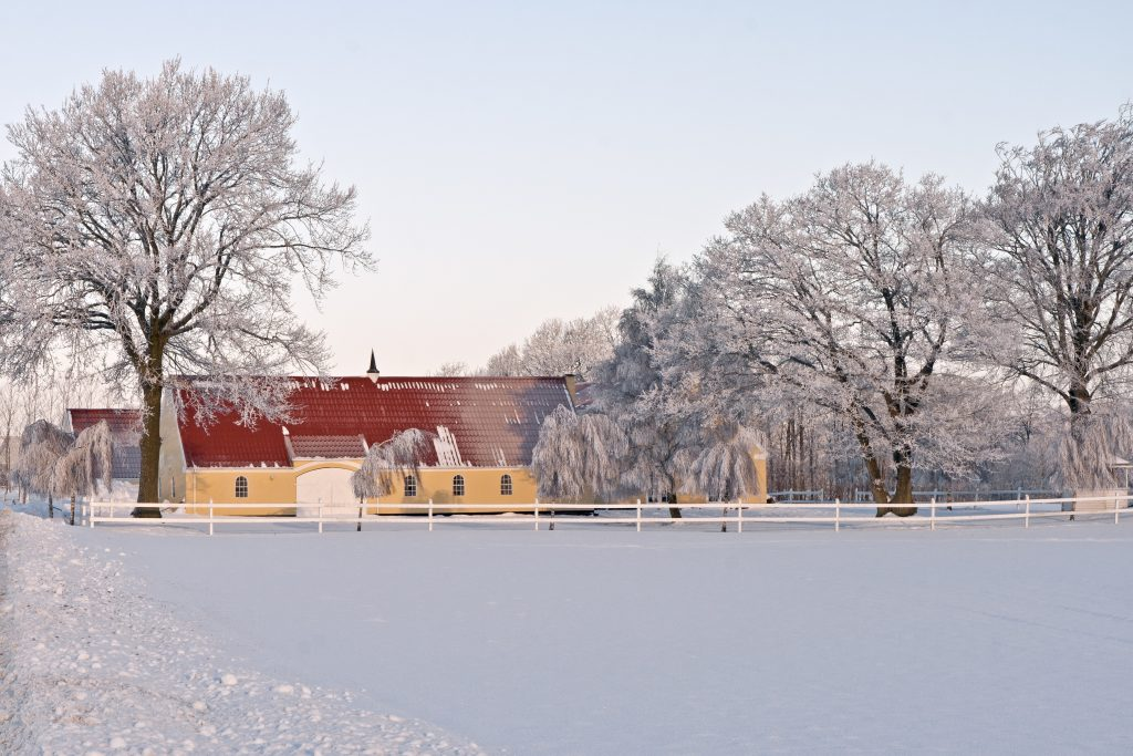Snowy Denmark: Beautiful Winter Kingdom. Farmhouse and frosty trees against a blue sky.
